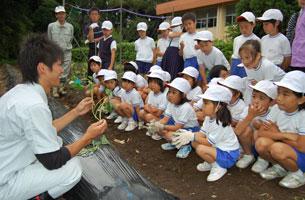 学校の畑で栽培指導